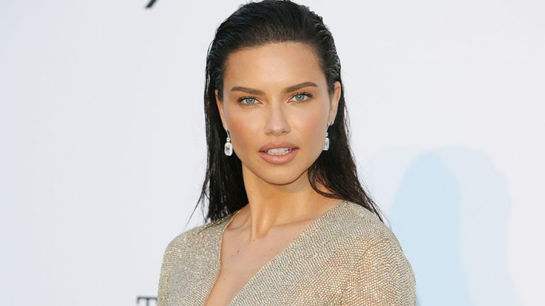 Adriana Lima Net Worth